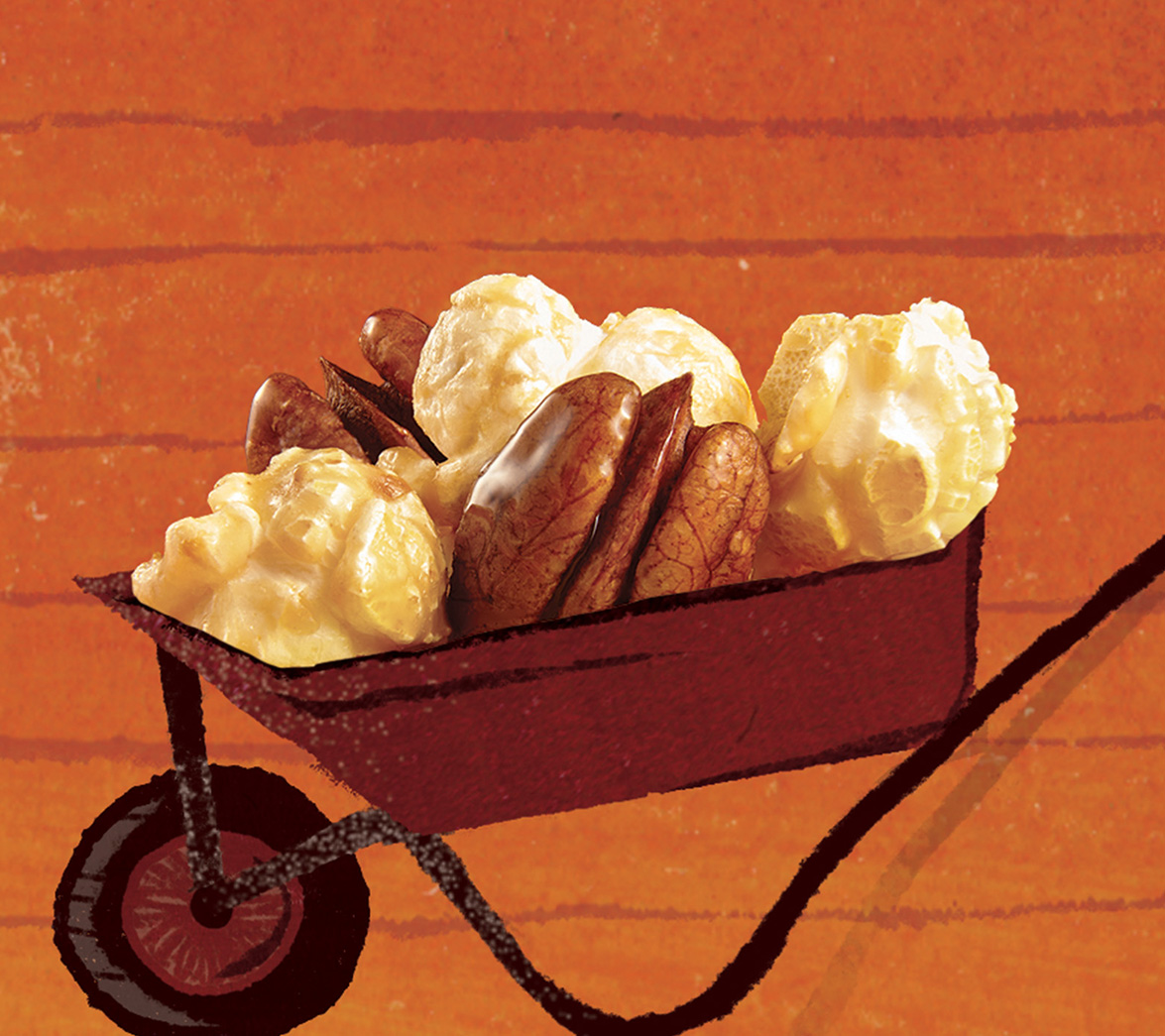 Animation of illustration for food startup brand Popcorn Shed, designed by White Bear Studio